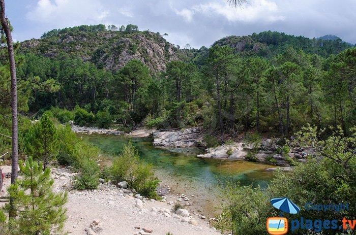 Torrente di Solenzara - Corsica