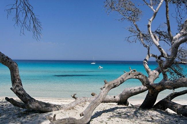 Saleccia Beach in desert of Agriates - Corsica