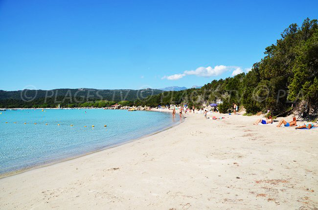 Beautiful beach of Santa Giulia in Corsica