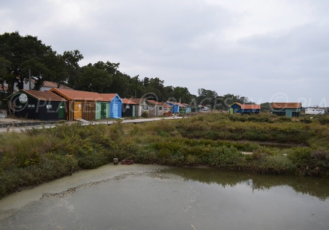 Oyster farm in Fort Royer in Oleron - France