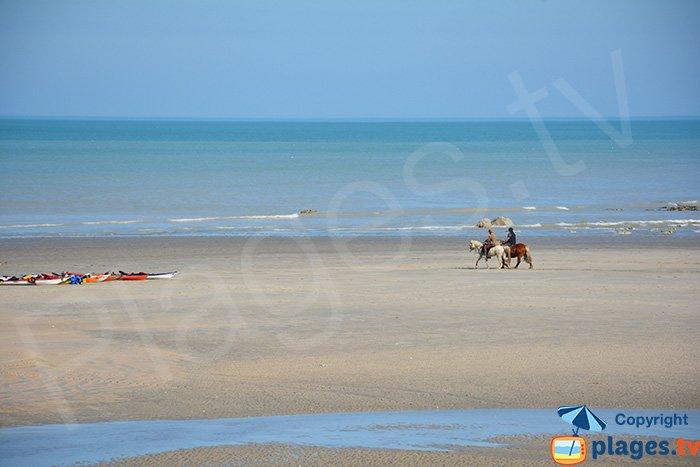 Plage de St Aubin (76) - promenade à cheval