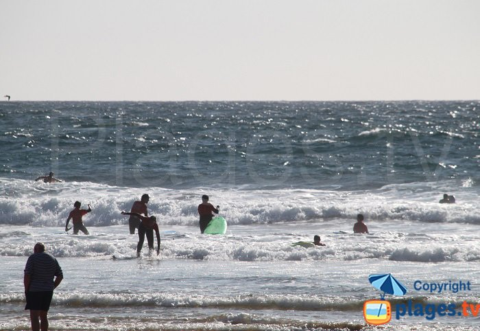 Surfers in Sauzon