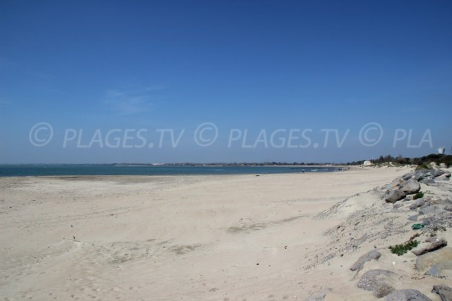 La Tamarissière Beach