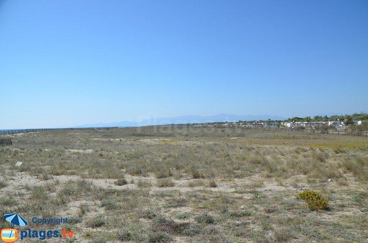 Front de mer de Torreilles - Vue vers le sud