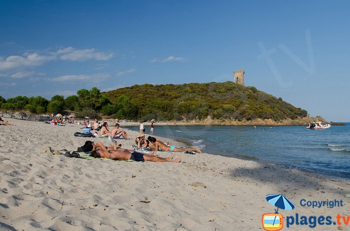 Spiaggia della torre di Fautea - Corsica