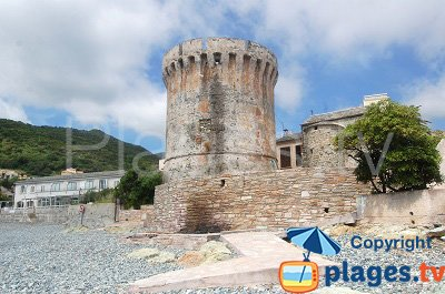 torre genovese Miomo - Santa-Maria-di-Lota