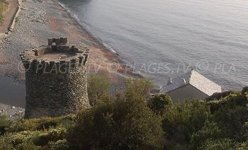 Tour génoise de la marine de Negru à Olmeta