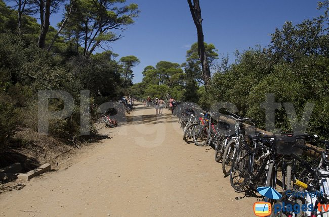 Bike in Porquerolles in France