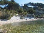 Corton Cove - Cassis