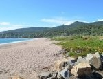 Capicciolo Beach - Campitellu Beach - Olmeto
