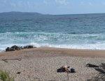 Abbartello Beach - Olmeto