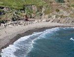En Baux Beach - Port-Vendres