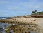 Port Beach - Sausset-les-Pins