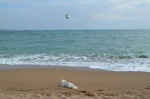 Spiaggia del Pacha