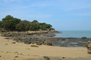 Sables Jaunes Beach - Ile d'Aix