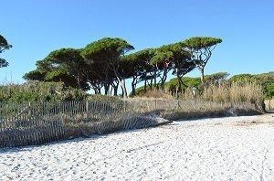 Spiaggia delle Salins