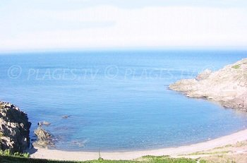 Spiaggia dell'Oli - Collioure