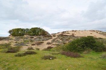 Spiaggia dele Dune