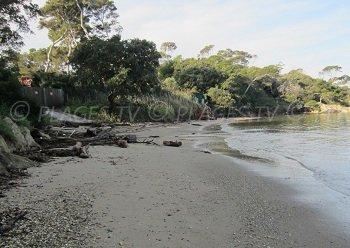 Spiaggia dell'Estanci
