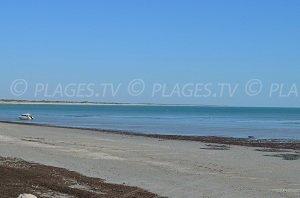Spiaggia del Martray Ile de Ré