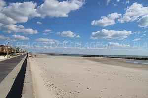 Spiaggia dell'Albatros