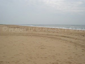 Naturist beach of Arcay Point - La Faute-sur-Mer