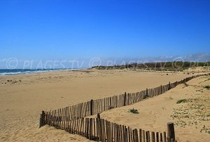 Spiaggia La Séoune - Sérignan