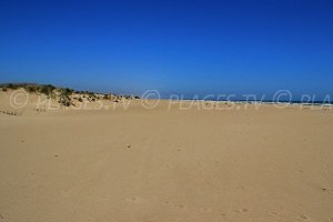 Spiaggia Orpellières
