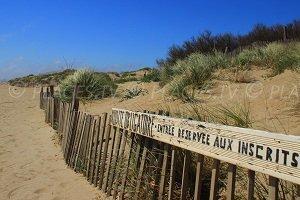 Naturist Beach - Sérignan