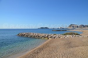 Beach for Dogs - La Ciotat