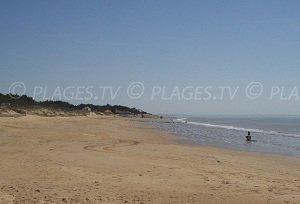 Camélias Beach - La Tranche-sur-Mer