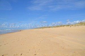 Grand Crohot Beach - Lège-Cap-Ferret