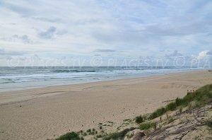 Spiaggia dell'Horizon