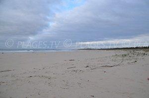 Plage Saint-Nicolas - plage océane - Le Verdon-sur-Mer