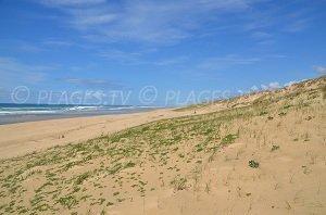 Spiaggia Jenny