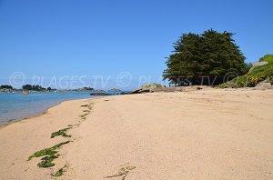 Ty Néouis Beach - Trégastel