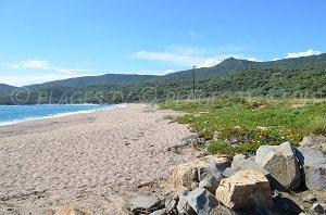 Spiaggia di Capicciolo - Spiaggia di Campitellu