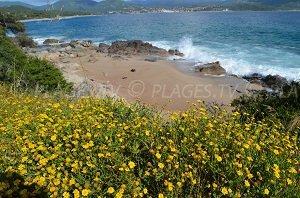 Spiaggia Piscona
