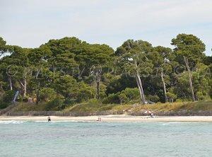 Spiaggia dell'Estagnol