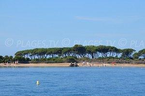 Sainte Anne Beach - Iles de Lérins - Ste Marguerite