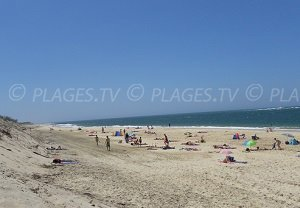 Spiaggia Petit Nice