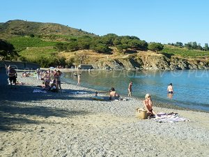 Plage Bernardi - Port-Vendres