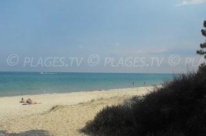 Pinia Beach - Ghisonaccia