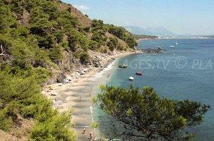 Spiaggia nudista del Jonquet