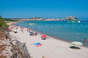 Spiaggia della Pineta