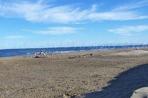 Vieille Nouvelle Beach - Salines Beach - Gruissan-Plage
