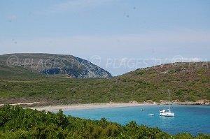 Cala Francese Beach - Macinaggio
