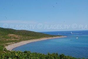 Finocchiarola Beach - Macinaggio