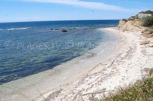Spiaggia di Patrimonio - Patrimonio