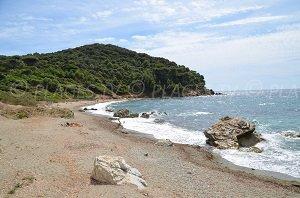 Brouis Beach - La Croix-Valmer
